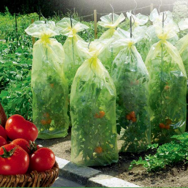 Növényvédő háló